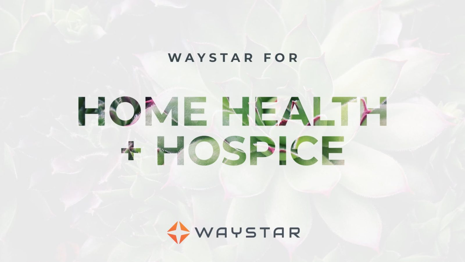 Waystar for Home Health + Hospice